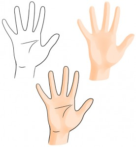 hand-illustration